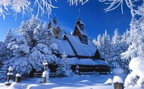 Картинка зима, белый, снег, лёд