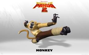 Картинка monkey, weapon, kung Fu, Kung fu Panda, kung Fu Panda 2