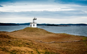 Картинка sky, birds, Lime Kiln Lighthouse