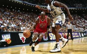 Обои NBA, болельщики, Майкл Джордан, баскетболисты, НБА, Orlando Magic, Шакил О'Нил, Орландо Мэджик, Чикаго Буллз, Shaquille ...