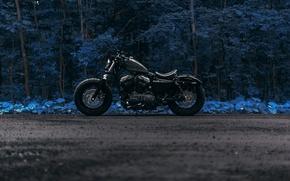 Картинка дорога, лес, Harley Forty Eight