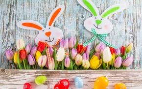 Картинка цветы, яйца, colorful, Пасха, тюльпаны, tulips, spring, Easter, eggs
