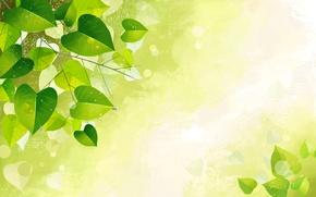 Обои листья, текстура, капля, природа