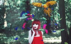 Картинка девушка, птицы, перья, разноцветные