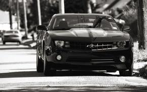 Картинка авто, черный, шевроле, chevrolet, camaro ss, камаро