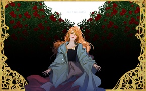 Картинка розы, рамка, румянец, рыжая, кусты, art, Choo Haeyun, the Pale Horse