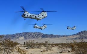 Картинка песок, небо, горы, кустарник, американские, военно-транспортные вертолёты, Боинг Вертол CH-46 Си Найт, Boeing Vertol CH-46 …