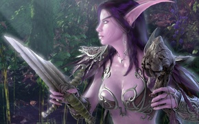 Обои Грудь, Night Elf, Осколок Меча, Ночная Эльфийка, Teldrassil, WoW, World of Warcraft