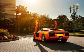 Картинка цветы, оранжевый, Lamborghini, брусчатка, блик, ламборджини, Murcielago, открытые двери, orange, ламборгини, мурселаго, ламбо двери, фонарный ...