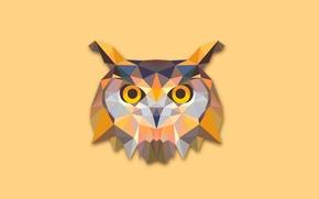 Картинка абстракция, сова, птица, минимализм, owl