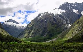 Обои зелень, снег, горы
