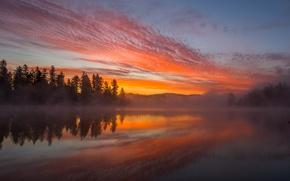 Картинка туман, облака, небо, пейзаж, закат