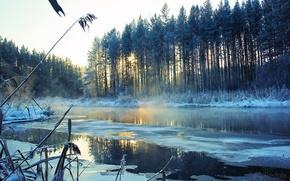 Картинка зима, снег, деревья, пейзаж, река