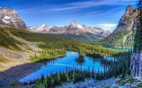 Картинка лес, небо, облака, снег, озеро, скалы, Горы
