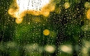 Картинка glass, rain, water, drops