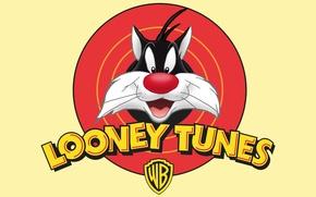 Картинка Кот, Мультфильм, Looney Tunes, Sylvester, Сильвестр