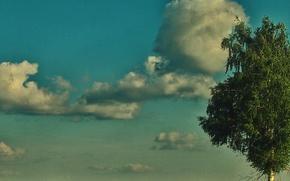 Картинка Небо, Облака, Дерево, Трава, Куст, Листва