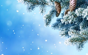Картинка зима, снег, снежинки, елка, шишки, nature, winter, snow