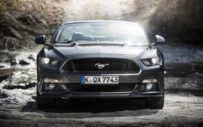 Картинка Mustang, Ford, мустанг, кабриолет, форд, Convertible, 2015, EU-spec