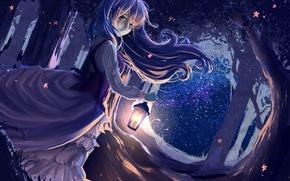 Картинка лес, девушка, ночь, ветер, платье, арт, фонарь, ryouya
