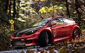 Картинка осень, листья, Ford Focus