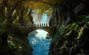 Обои Mirkwood, Лихолесье, Хоббит: Пустошь Смауга, or There and Back Again, Мирквуд, The Hobbit: The Desolation ...