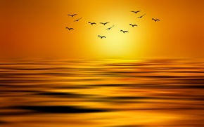 Картинка солнце, птицы, озеро, краски, стая, стилизация, Josep Sumalla
