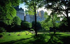 Картинка парк, отдых, нью-йорк