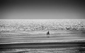 Обои пляж, ночь, прогулка, море