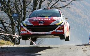 Картинка Пежо, Peugeot, ралли, Rally, IRC, 207, TOTAL, Пёжо, взлетает