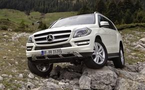 Картинка лес, белый, камни, Mercedes-Benz, джип, внедорожник, 500, передок, BlueEfficiency, Мерседес Бенз
