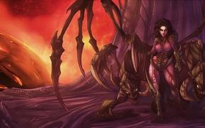 Картинка starcraft, zerg, blizzard, sarah kerrigan, Queen of Blades
