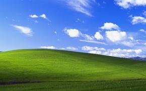 Обои windows, небо, поле, облака, безмятежность