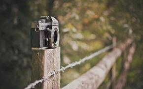 Картинка зелень, природа, фон, widescreen, обои, настроения, забор, размытие, камера, ограждение, фотоаппарат, wallpaper, широкоформатные, camera, background, …