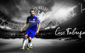 Картинка wallpaper, sport, stadium, football, player, Chelsea FC, Cesc Fabregas