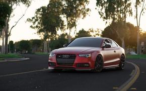 Картинка Audi, Red, Matte, Build