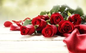 Картинка цветы, фон, листва, розы, букет, бутоны, атлас, flowers, background, bouquet, roses, foliage, Atlas, flower buds