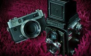 Картинка макро, фон, камеры