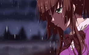 Картинка Аниме, Strike the Blood, Kirasaka Sayaka, дождь.
