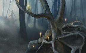 Обои лес, глаза, грибы, свечи