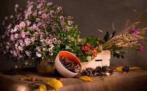 Картинка ткань, трава, мешковина, натюрморт, ягоды, листья, короб, шишки, калина, ветка, цветы, миска