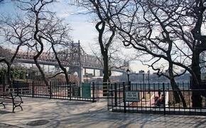 Картинка деревья, мост, парк, река, Нью-Йорк