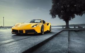 Обои Rosso, фары, Novitec, обои, Ferrari, дерево, 488, Spider, передок, авто