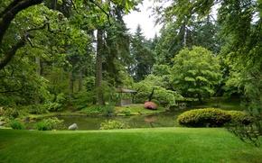 Картинка зелень, трава, деревья, пруд, сад, Канада, Ванкувер, беседка, кусты, Nitobe Garden