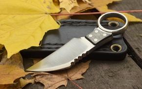 Картинка листья, оружие, нож, чехол