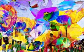 Картинка листья, цветы, природа, лепестки, сад, луг