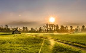 Картинка поле, свет, дом