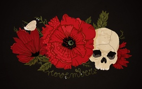 Картинка цветок, красный, чёрный, мак, череп, мотылёк, happynes, ноябрь, november