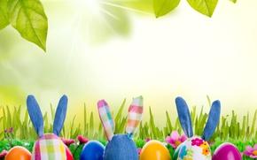 Картинка трава, игрушка, яйца, весна, кролик, луг, пасха, grass, sunshine, rabbit, flowers, spring, eggs, easter, bunny, …