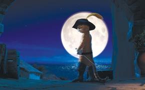 Обои луна, Кот в сапогах, Antonio Banderas, Антонио Бандерас, ночь, Puss in Boots, город
